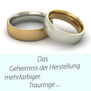 Ehringe -Innen Gelbgold Außen Weissgold